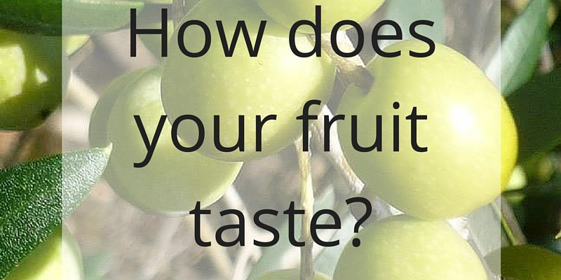 How does your fruit taste?